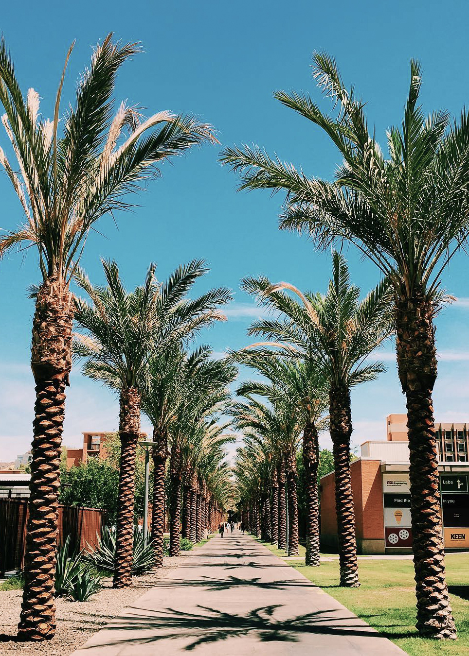 Arizona State University dating site